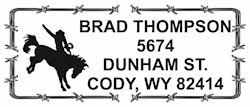 SQLICENSEPLATE $26.50 Rectangle Address Stamp
